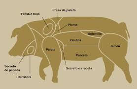 cerdoenpartes
